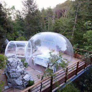 nuit insolite dans une bulle en paca var bulles des bois. Black Bedroom Furniture Sets. Home Design Ideas